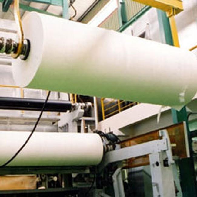 Giá bột giấy có dấu hiệu tăng trở lại