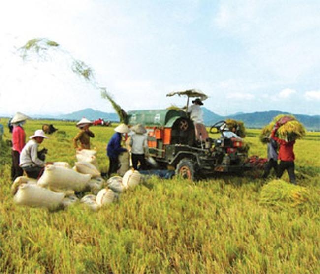 Nông dân không dễ tìm vốn kích cầu