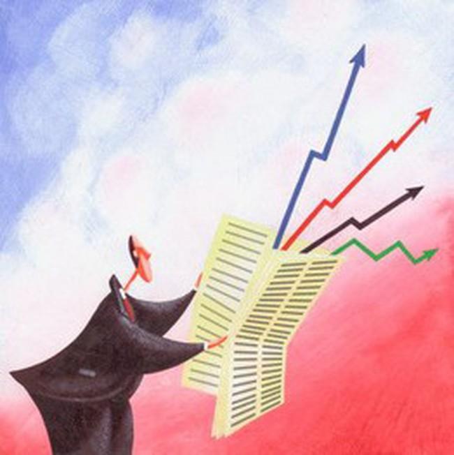 NĐT ngập ngừng mua, VN-Index tăng hơn 8 điểm với khối lượng thấp
