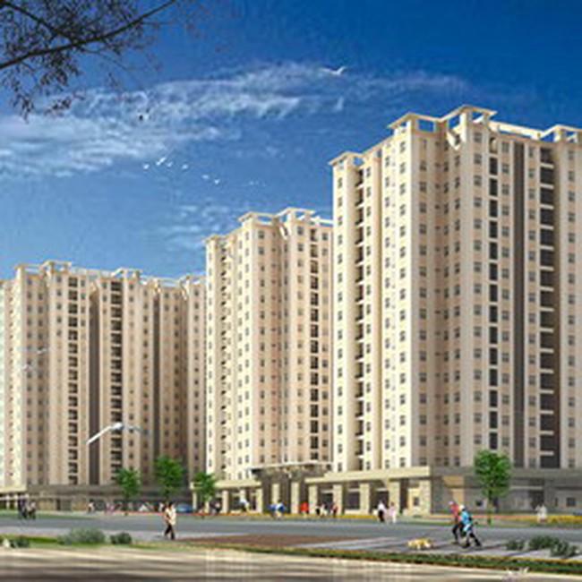 Quy hoạch xây dựng nhà cao tầng tại phường 14, quận Tân Bình
