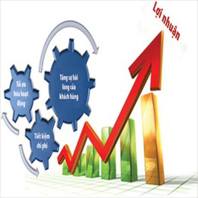CJC và DTC thông báo kết quả kinh doanh quý II/2009
