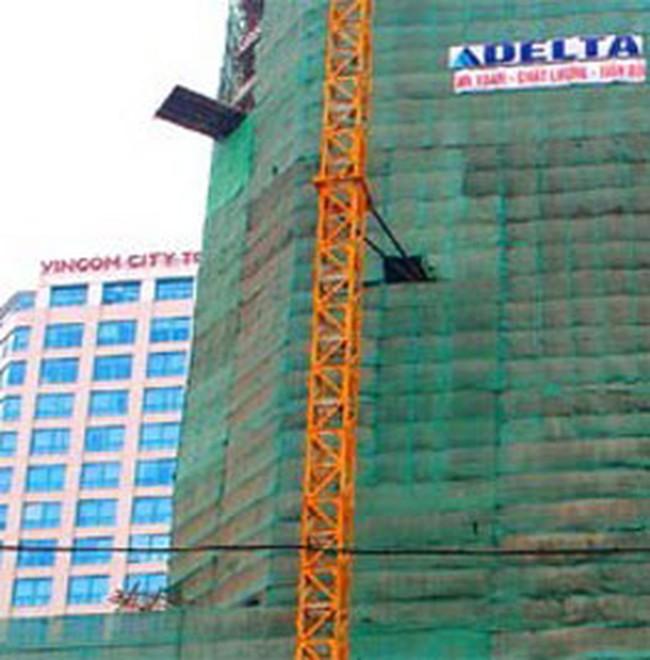 VIC: 6 tháng đầu 2009 lãi 66,6 tỷ đồng