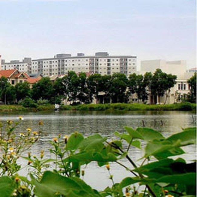 Thu lợi lớn từ đầu tư dự án địa ốc trong nước