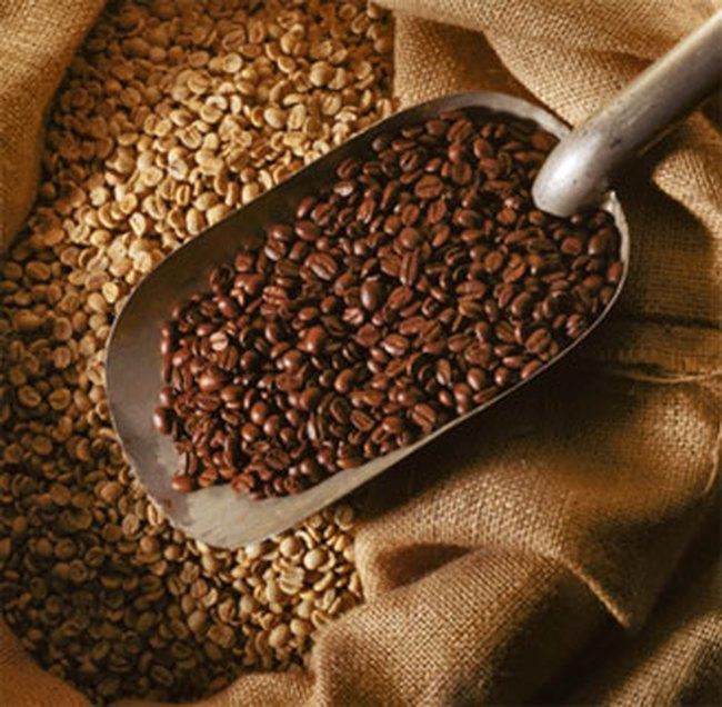 Giá cà phê tăng nhẹ