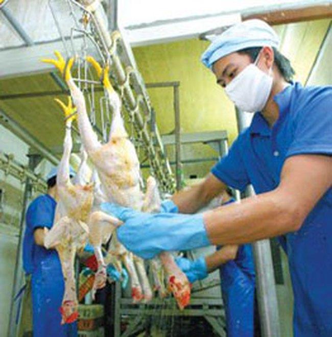 Thịt, thực phẩm đối mặt với áp lực tăng giá