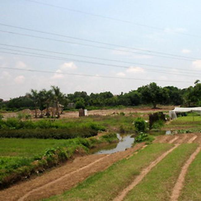8 dự án được lập ra để bán nền khi chưa được giao đất