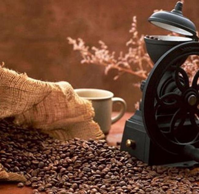 Giá cà phê diễn biến trái chiều, giá ca cao hạ