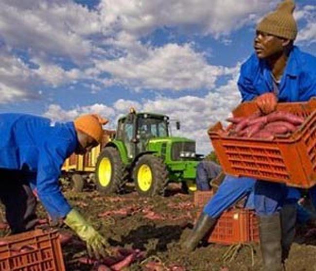 Thị trường châu Phi: Đích đến mới của doanh nghiệp