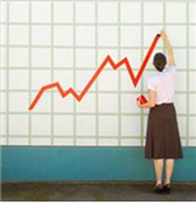 VN-Index có thể đạt 560 điểm vào cuối năm 2009