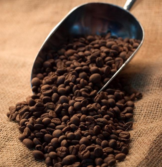 Giá cà phê tiếp tục hạ