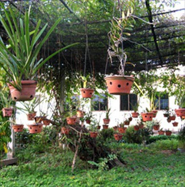 Khởi công Dự án Khu nhà vườn sinh thái Hoàn Sơn