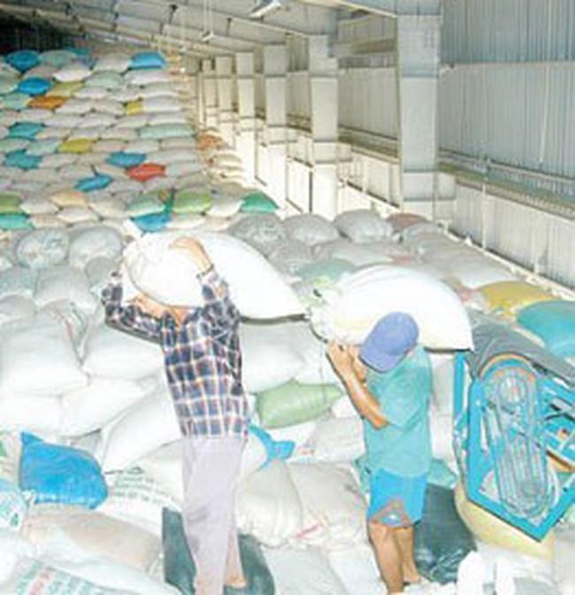 Giá lúa gạo tăng mạnh