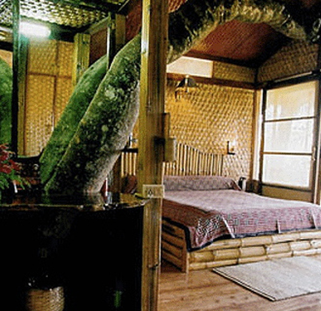 """Nhà nghỉ dưỡng miền sơn cước: Điểm ngắm của """"đại gia"""""""