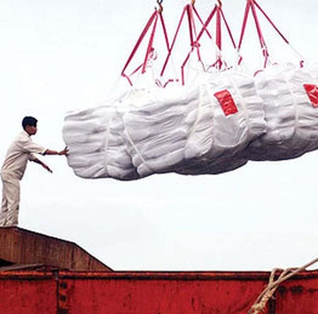 Giá gạo xuất khẩu đang bật dậy
