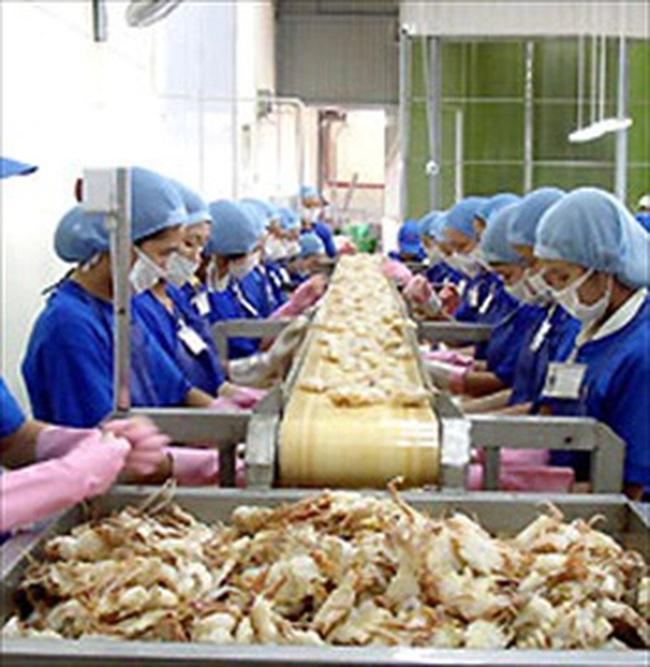 Phú Cường Jostoco: 10 tháng xuất khẩu hơn 1.150 tấn tôm đông lạnh