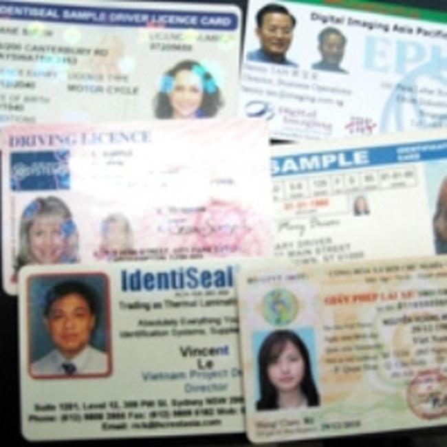 Đầu năm 2010, đổi mẫu giấy phép lái xe mới
