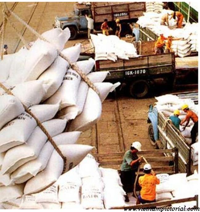 Giá gạo xuất khẩu đang tăng