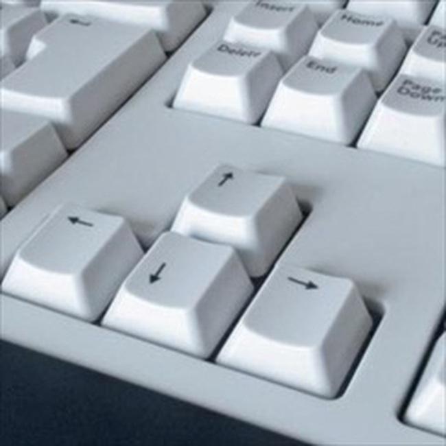 8.000 doanh nghiệp nộp hồ sơ thuế qua mạng