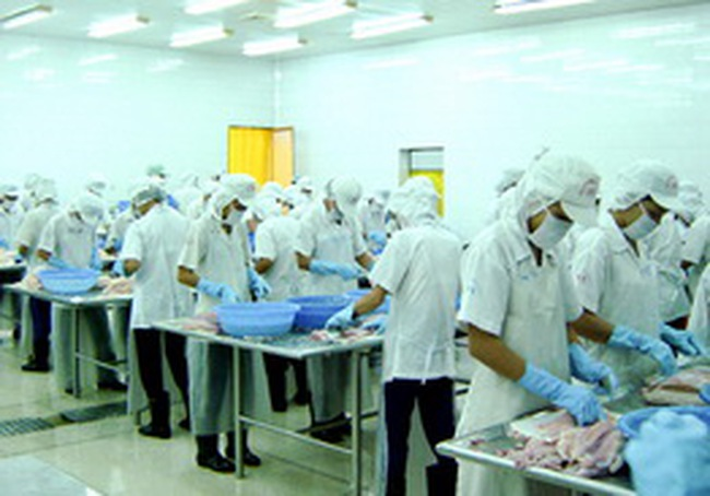 10 điểm nổi bật của ngành thuỷ sản Việt Nam năm 2009