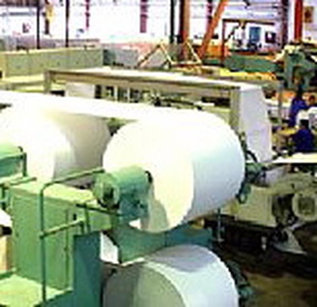 1.900 tỷ đồng xây dựng Nhà máy giấy Tân Mai-Kon Tum