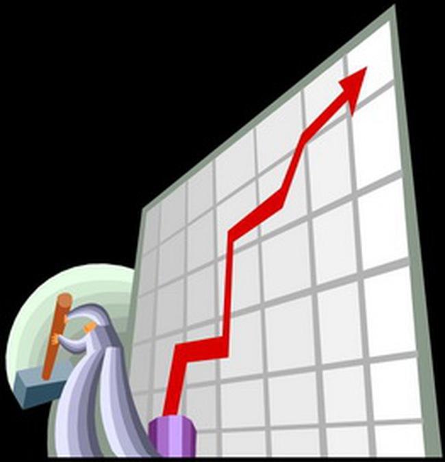CLS: lãi 19,5 tỷ đồng trong năm 2009