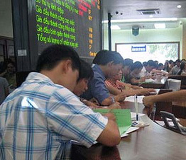 Công ty Sông Đà 25, Đầu tư phát triển nhà Đà Nẵng và xi măng Thanh Sơn đấu giá cổ phần