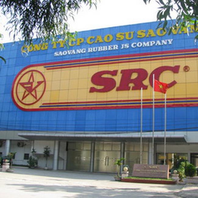 SRC: 10/2 Chốt quyền nhận cổ tức đợt 1/2009 tỷ lệ 12% và dự ĐHCĐ 2010