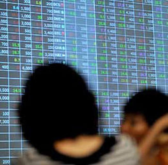 Nhà đầu tư tổ chức: Việt Nam ngược thông lệ