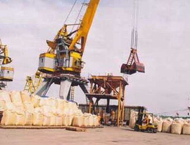 Doanh nghiệp Nhật Bản muốn xây dựng Cảng quốc tế Lạch Huyện ở Việt Nam