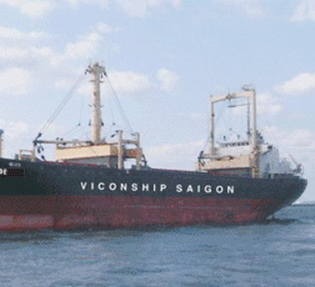 VSG: Quý 4 lỗ trước thuế  876 triệu đồng