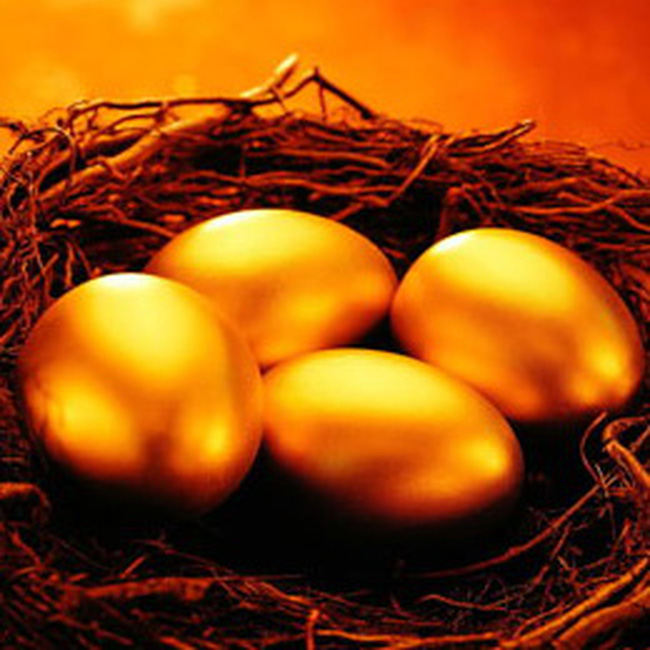 Năm 2010: Con gà nào sẽ đẻ trứng vàng?
