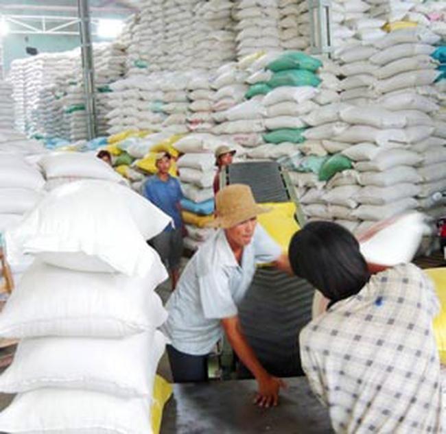 Thị trường ảm đạm, doanh nghiệp vẫn mua thêm gạo tạm trữ