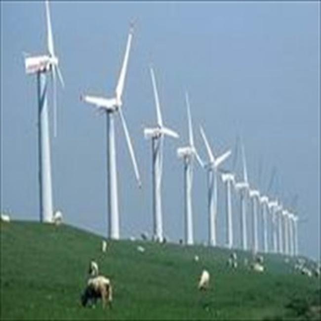 EVN xây nhà máy sản xuất điện gió ở Ninh Thuận