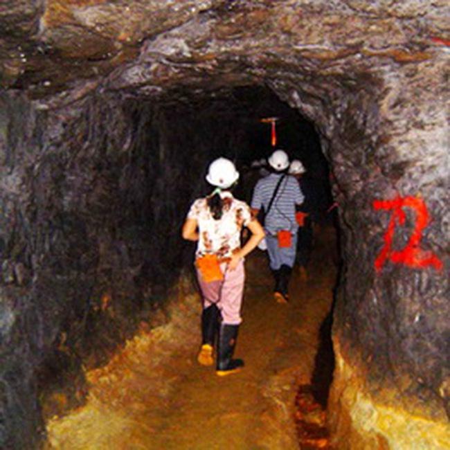 KSH: Đạt 3,23 tỷ đồng LNST quý I/2010, hoàn thành 13% kế hoạch