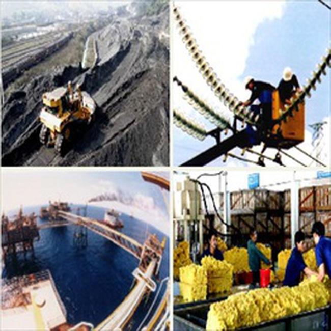 Tình hình hoạt động một số ngành trong quý I/2010