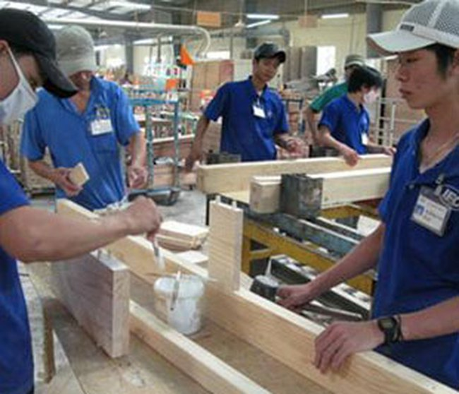 Doanh nghiệp thêm khó với gỗ nguyên liệu