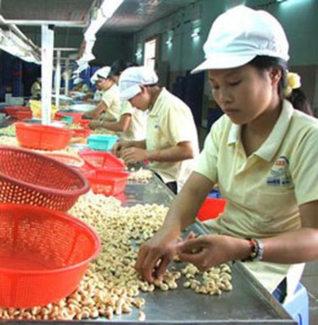 Giá xuất khẩu hạt điều tăng mạnh
