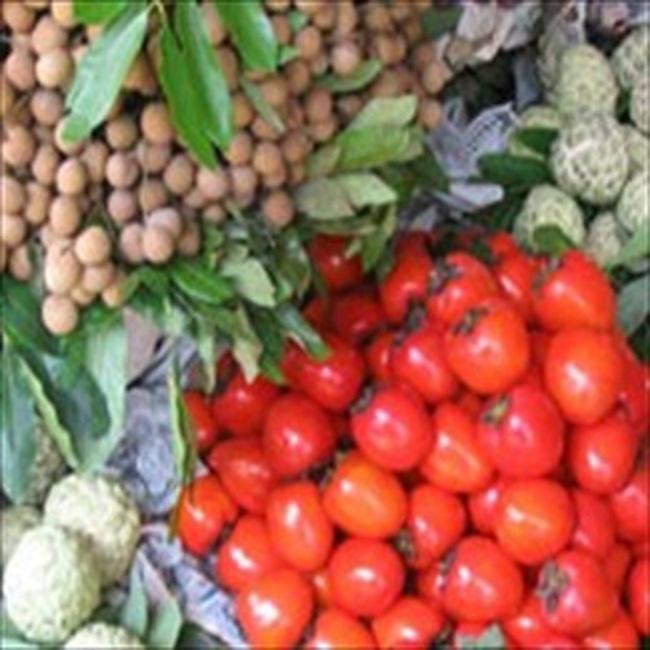 Nắng nóng, nhiều loại thực phẩm tăng giá