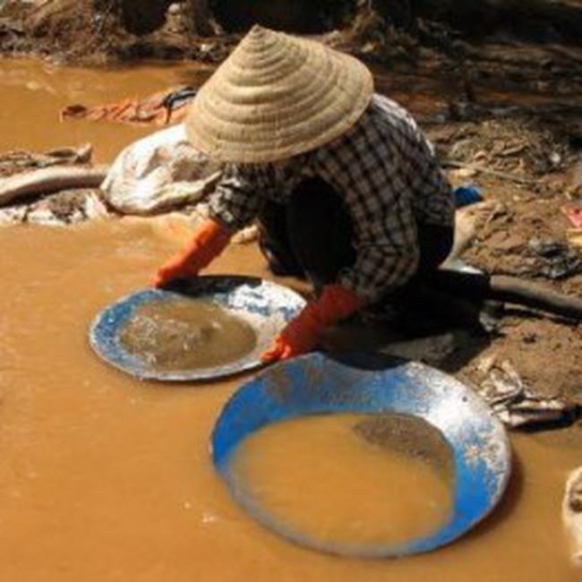 Việt Nam cũng có nhiều mỏ vàng