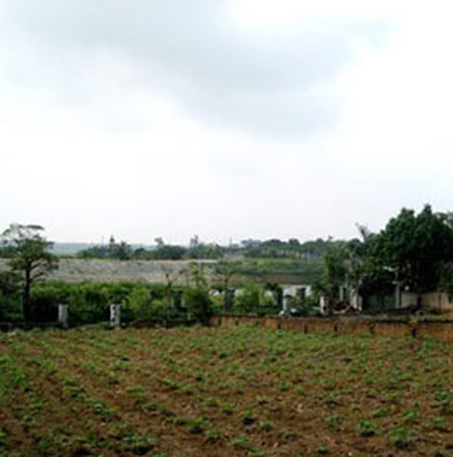 UBND TP Hà Nội phê duyệt xây dựng hạ tầng khu nuôi trồng thủy sản huyện Ba Vì