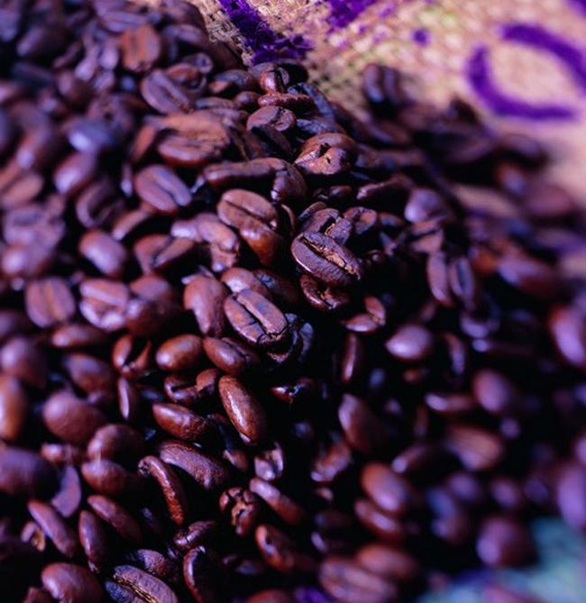 Hỗ trợ tạm trữ cà phê tính theo giá chưa có thuế
