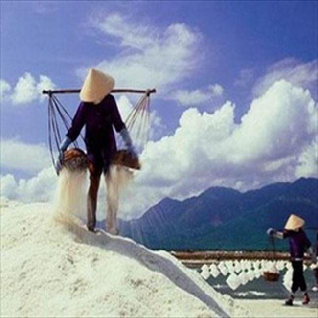 Thanh Hóa: Muối rớt giá, diêm dân lao đao