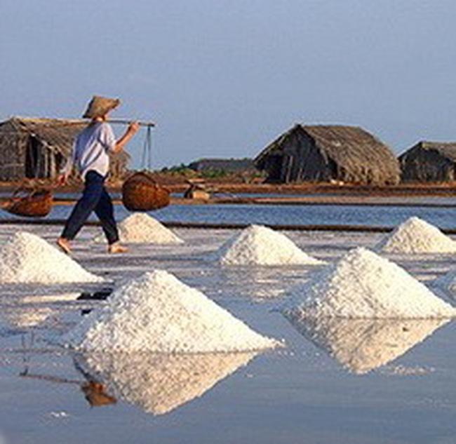 Thu mua 40.000 tấn muối tồn đọng