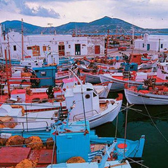 TMS: Ngày 28/06 ký kết hợp đồng hợp tác đầu tư Kinh doanh cảng Hải An