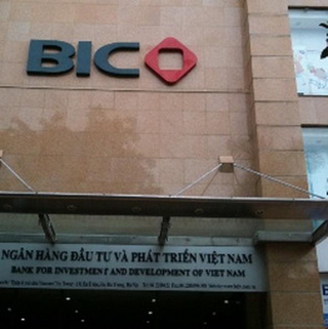 Bảo hiểm BIC: Năm 2011 sẽ niêm yết và phát hành CP cho đối tác chiến lược