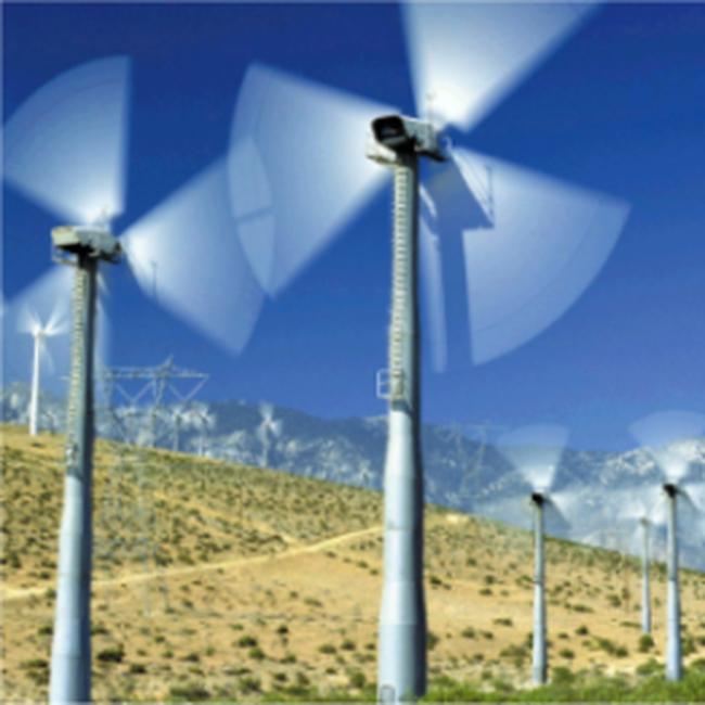 Giá bán điện gió có thể ở mức 8 cent/kWh