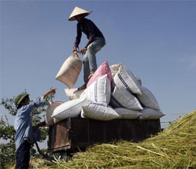 Nông nghiệp tăng trưởng trên 4,6% trong 9 tháng