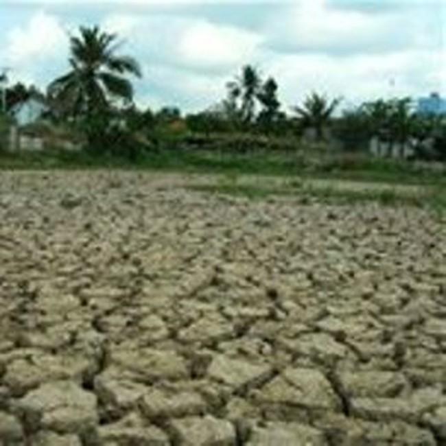 Nông nghiệp đối mặt mùa khô hạn nghiêm trọng