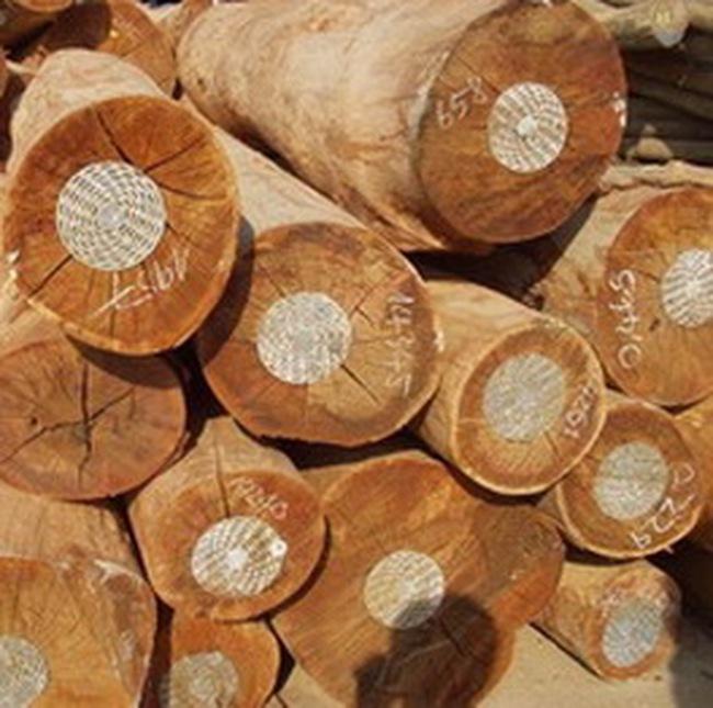 Xuất khẩu gỗ Thái Lan có nguy cơ sụt giảm mạnh