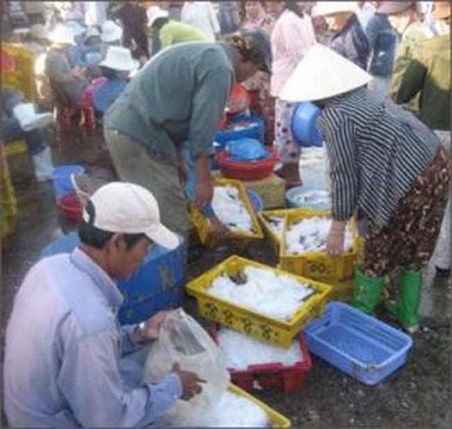 Tiền Giang: 214 tỷ đồng xây dựng nhà máy chế biến và bảo quản thủy sản thực phẩm